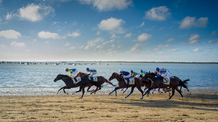 035-carreras-caballos-sanlucar-horse-racing-javier-sanchez-fotografo