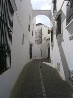 Bucolic street 1