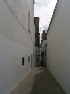 Bucolic street 3
