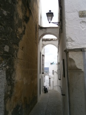 Bucolic street 4
