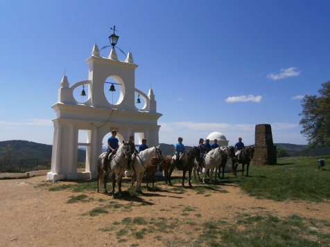 The white bell tower and horses