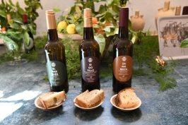Halcón wines
