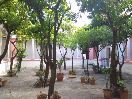 Orange trees courtyard of La Oliva