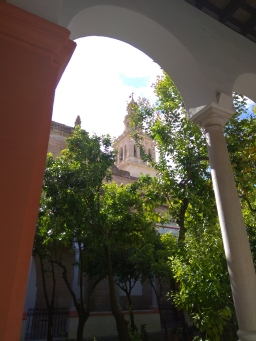 Bell tower from the orange trees courtyard